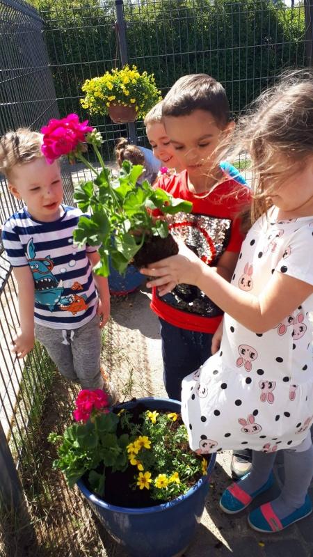 Sadzimy kwiatki :)